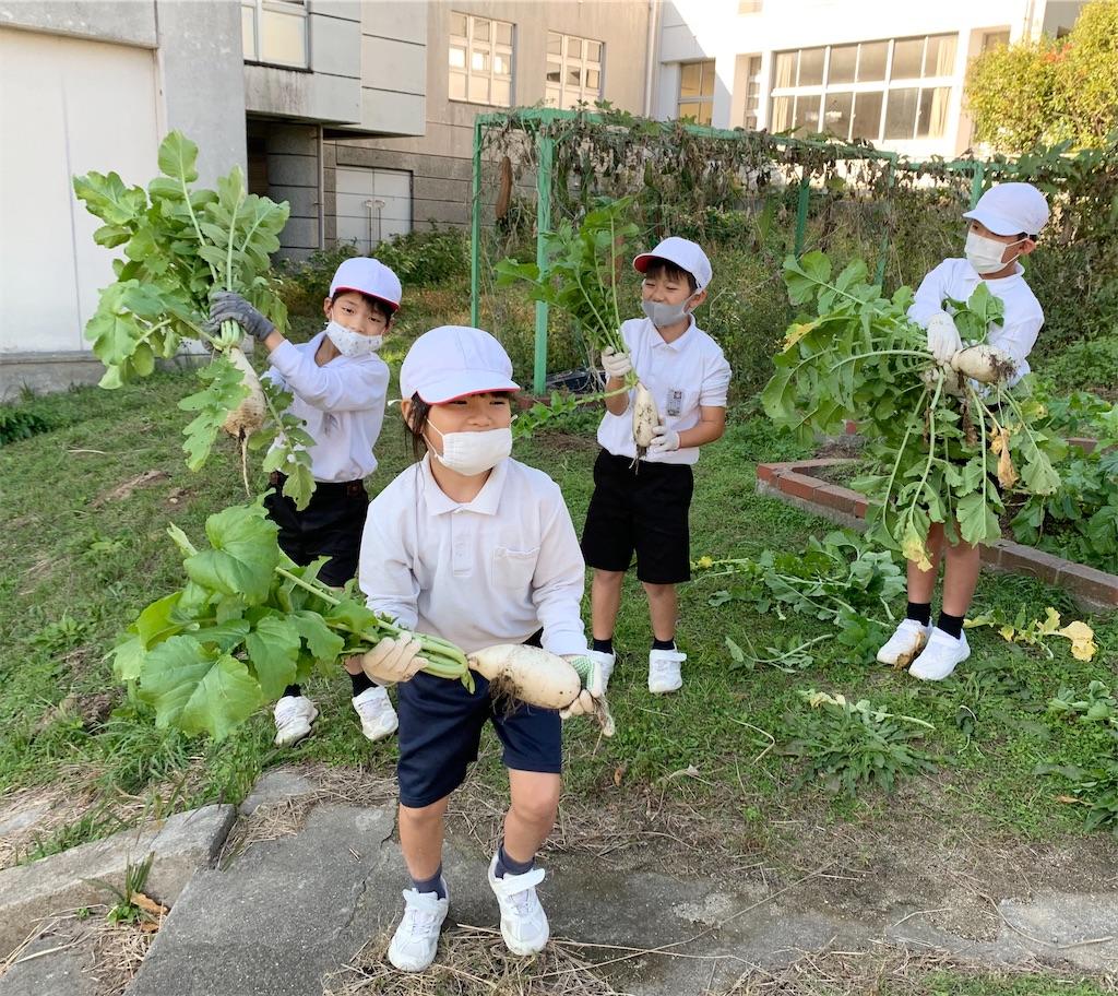 f:id:fukugawa-es:20201124151418j:image