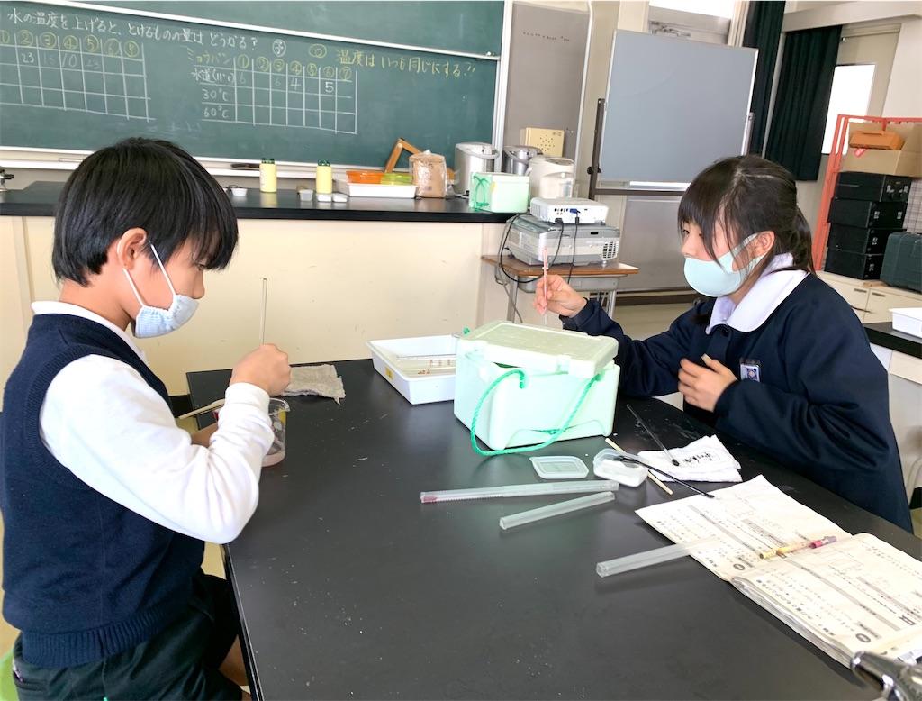 f:id:fukugawa-es:20210129145816j:image