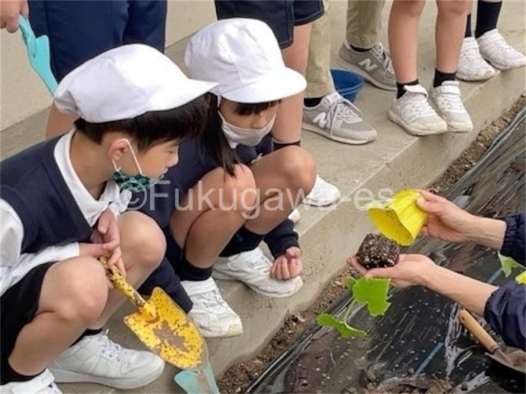 f:id:fukugawa-es:20210430154617j:image