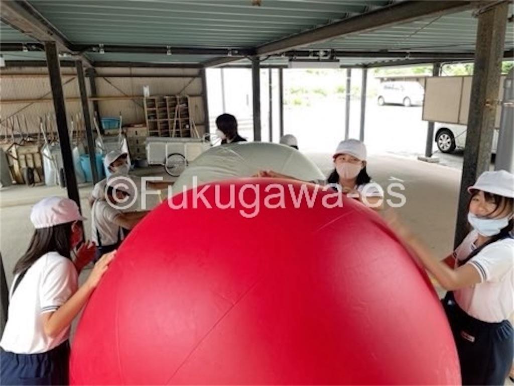 f:id:fukugawa-es:20210514134356j:image