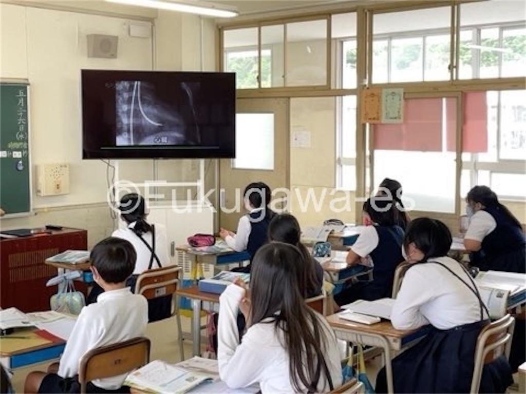 f:id:fukugawa-es:20210526122011j:image