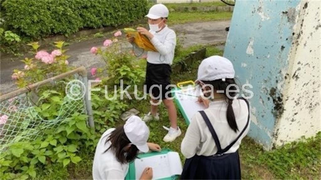 f:id:fukugawa-es:20210527151116j:image