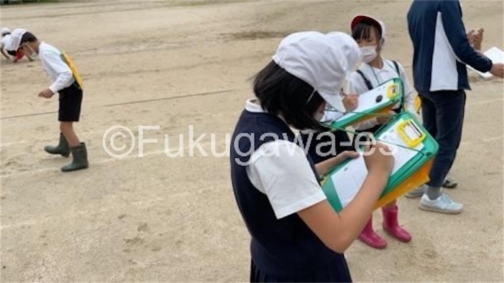 f:id:fukugawa-es:20210527151208j:image