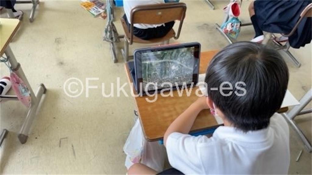 f:id:fukugawa-es:20210528112450j:image