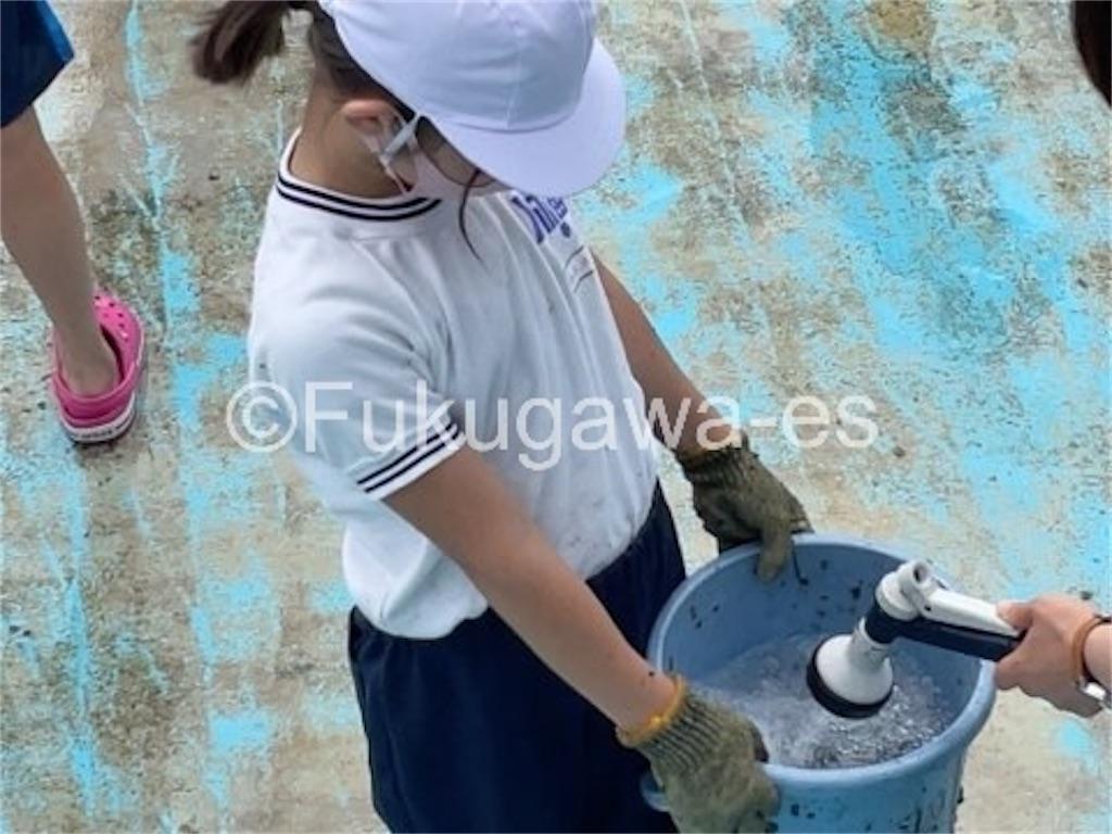 f:id:fukugawa-es:20210604151038j:image