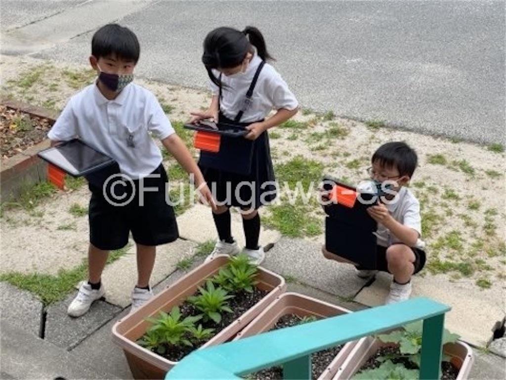 f:id:fukugawa-es:20210611104724j:image