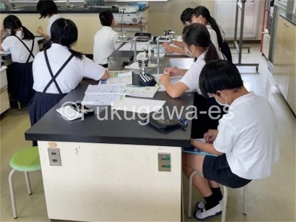 f:id:fukugawa-es:20210615110449j:image