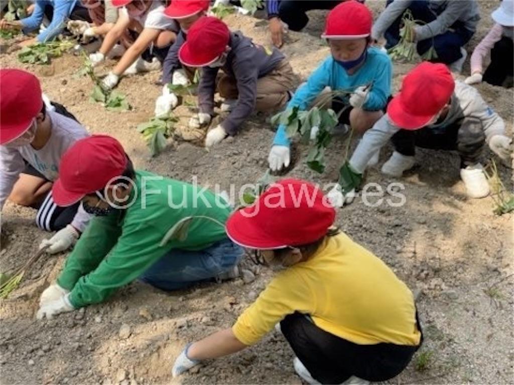f:id:fukugawa-es:20210629104656j:image