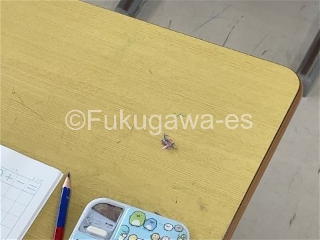 f:id:fukugawa-es:20210712121646j:image