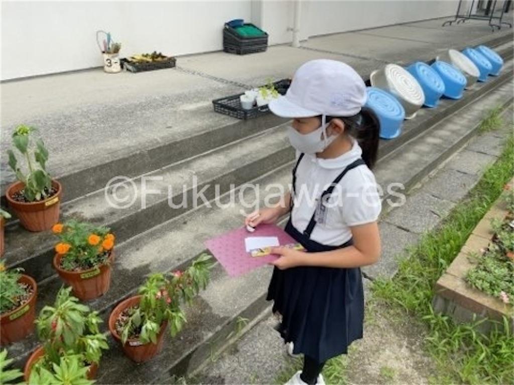 f:id:fukugawa-es:20210713105520j:image