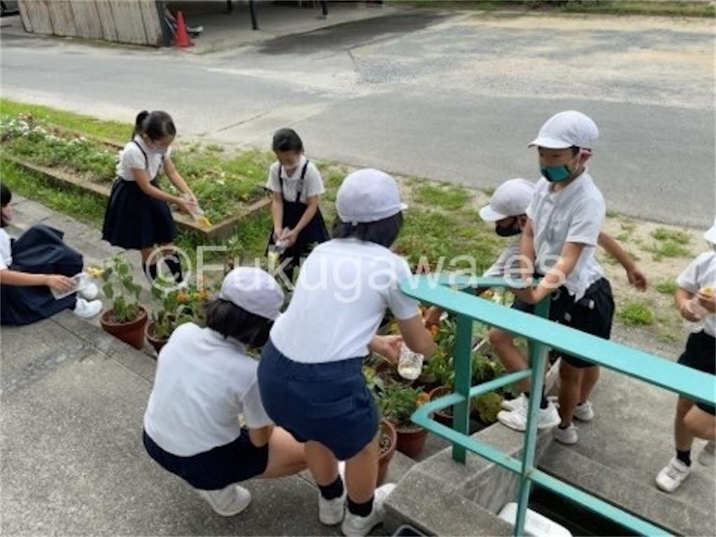 f:id:fukugawa-es:20210713105604j:image
