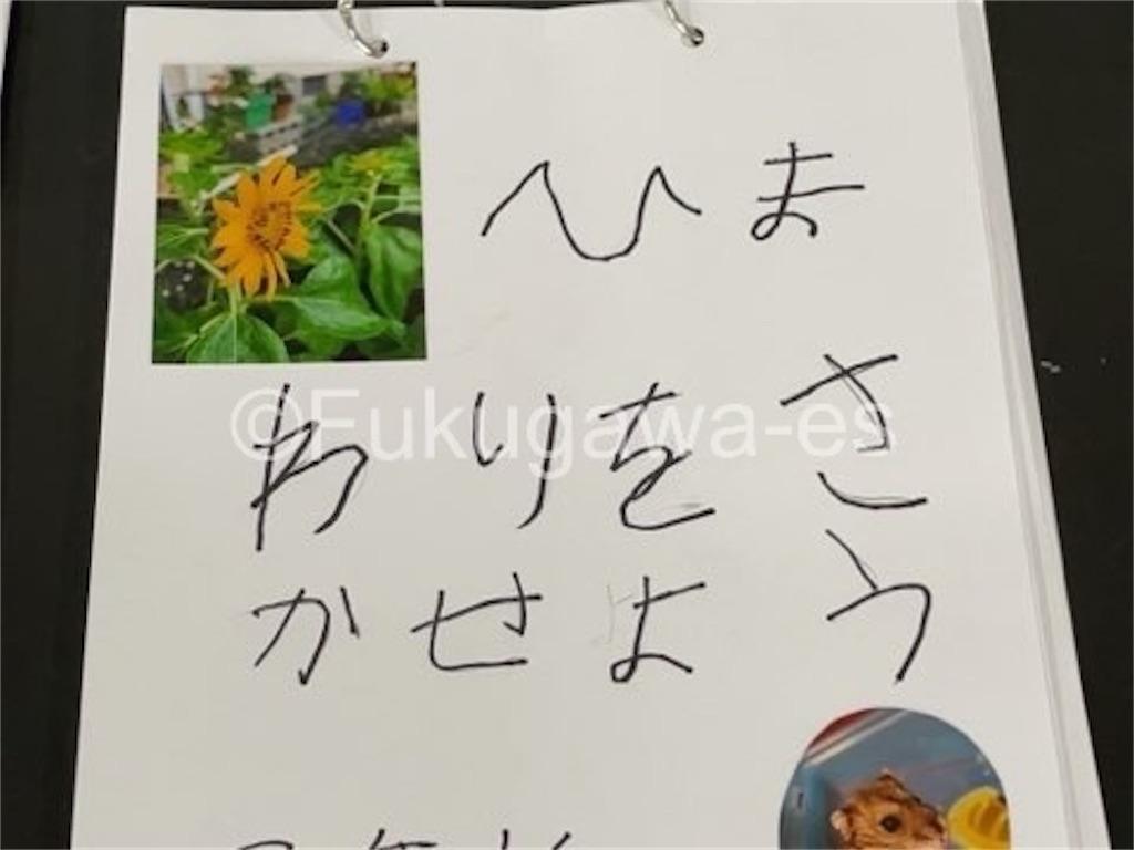 f:id:fukugawa-es:20210906132416j:image