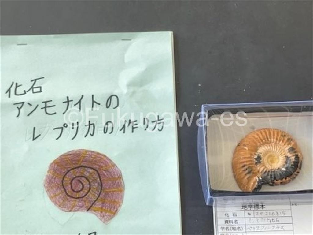 f:id:fukugawa-es:20210906132440j:image