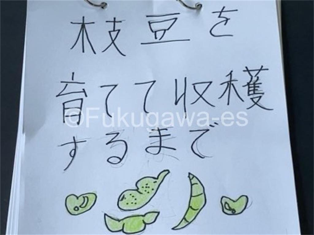 f:id:fukugawa-es:20210906132509j:image