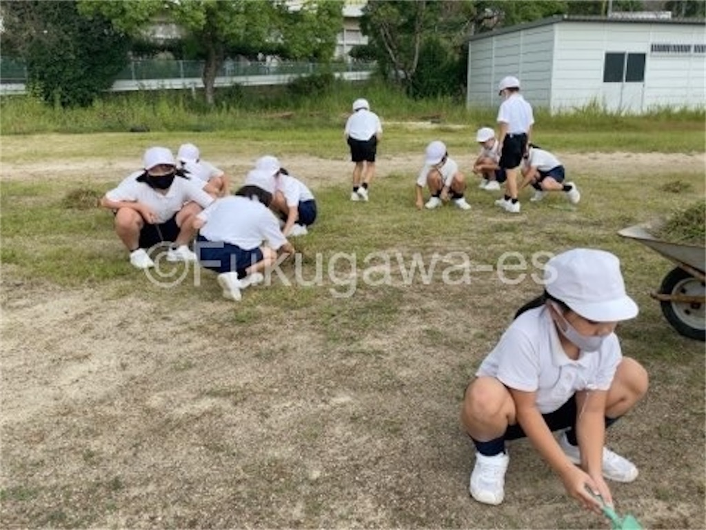 f:id:fukugawa-es:20210930142440j:image