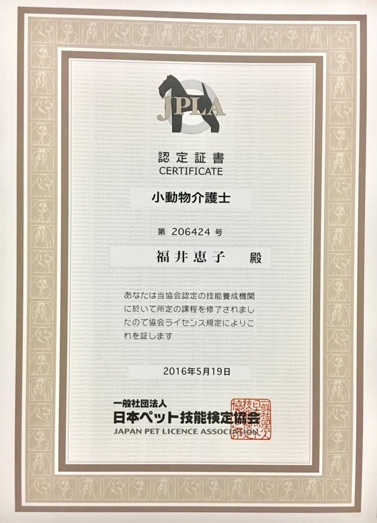 f:id:fukuichrin:20170804031642j:plain