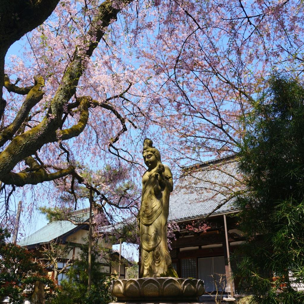 f:id:fukuitabi:20160412204405j:plain