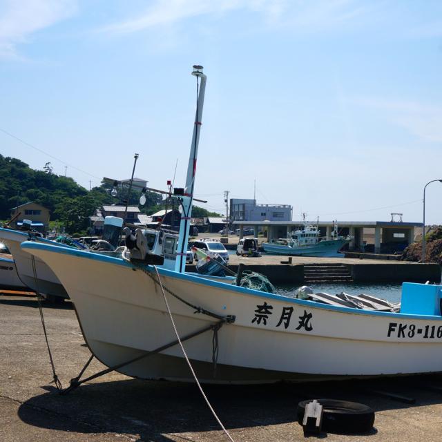 f:id:fukuitabi:20160619120508j:plain
