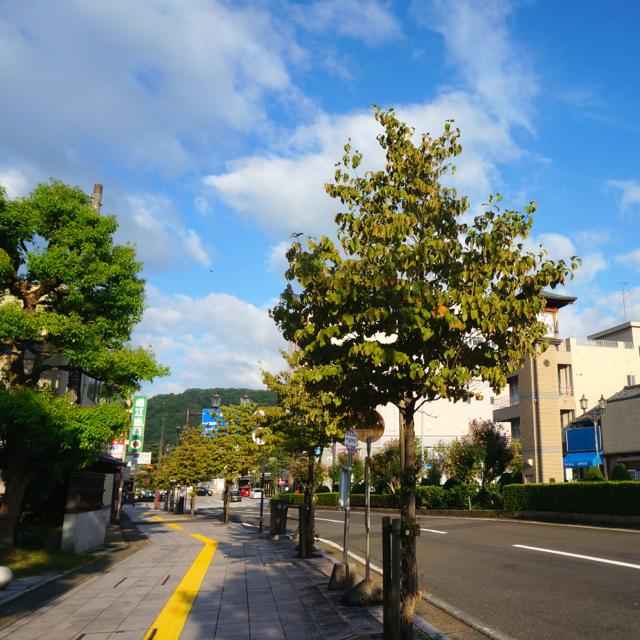 f:id:fukuitabi:20160829073444j:plain