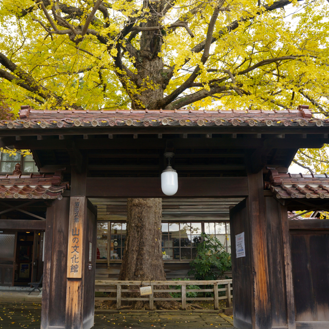 f:id:fukuitabi:20161112082124j:plain