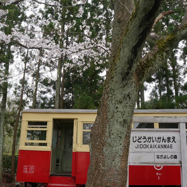 f:id:fukuitabi:20170410101911j:plain