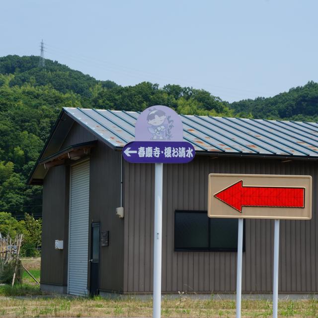 f:id:fukuitabi:20170702165056j:plain