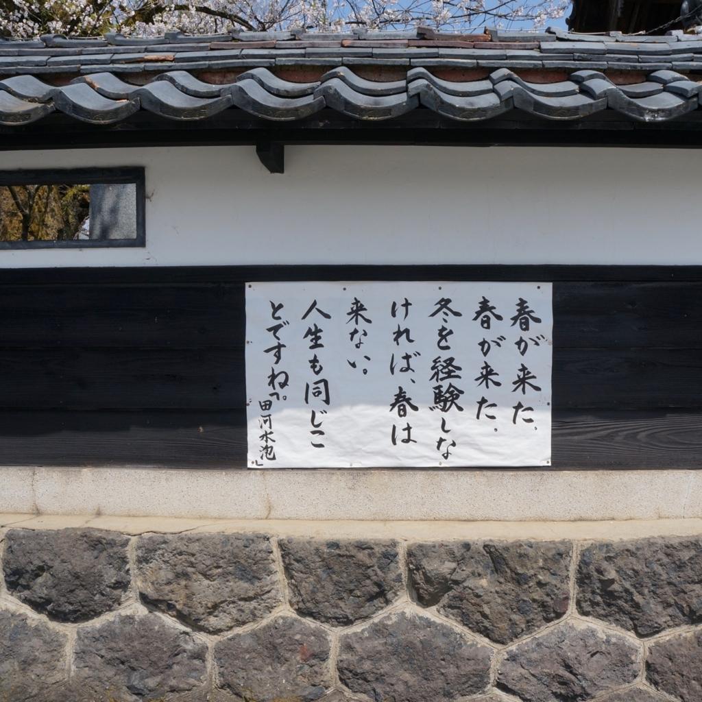 f:id:fukuitabi:20180408220818j:plain