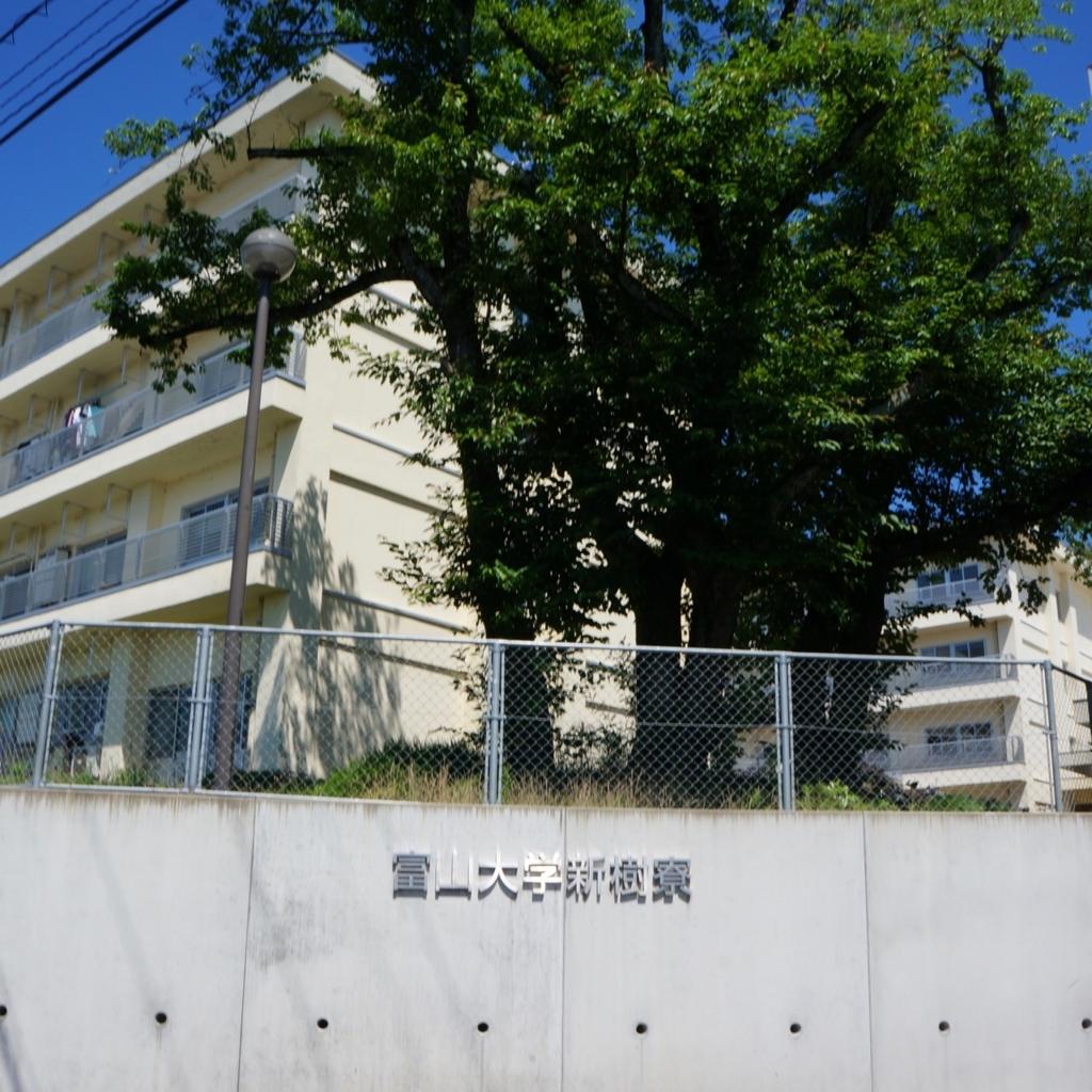 f:id:fukuitabi:20180618092416j:plain