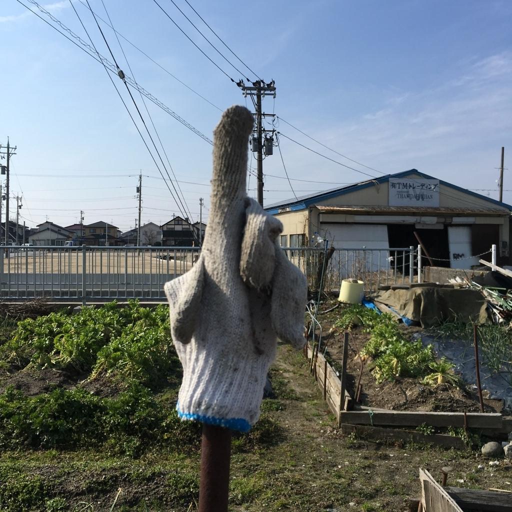 f:id:fukuitabi:20190225130004j:plain