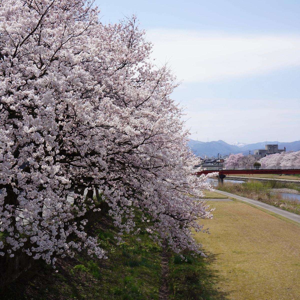 f:id:fukuitabi:20190429075054j:plain