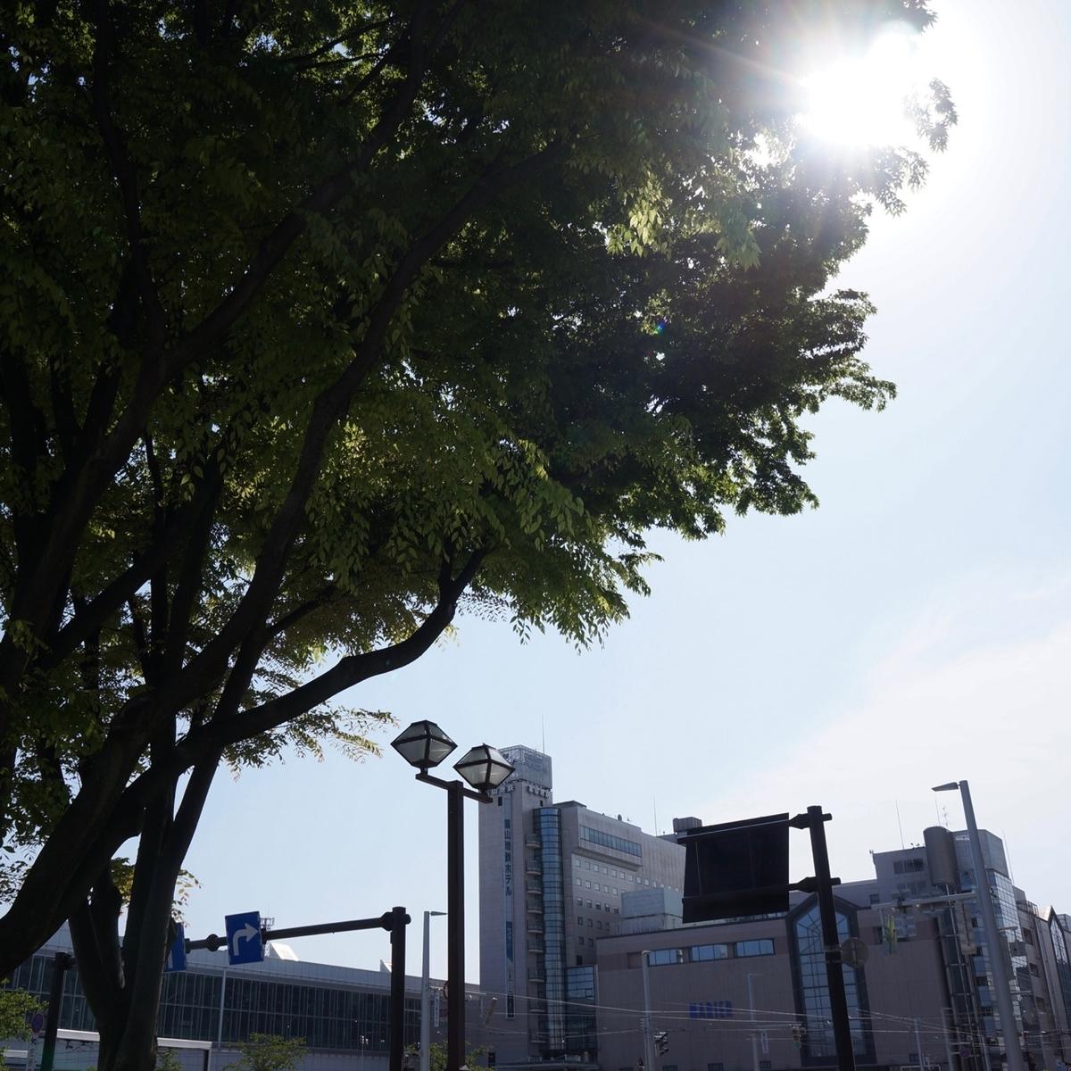 f:id:fukuitabi:20190505110237j:plain