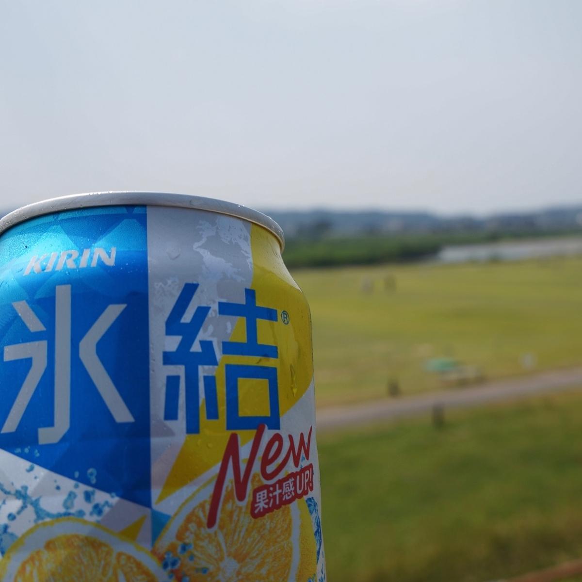 f:id:fukuitabi:20190622161823j:plain