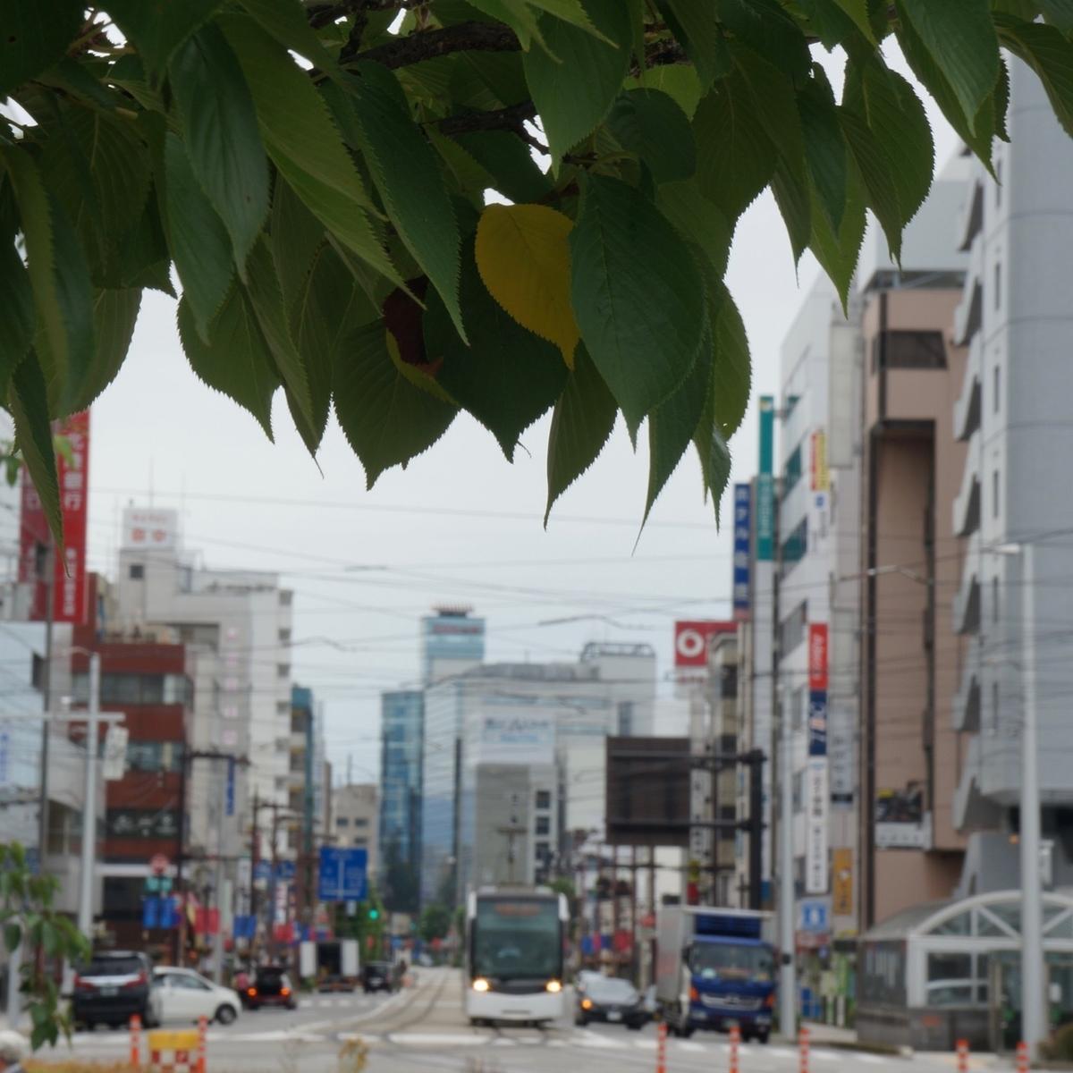 f:id:fukuitabi:20190726114105j:plain