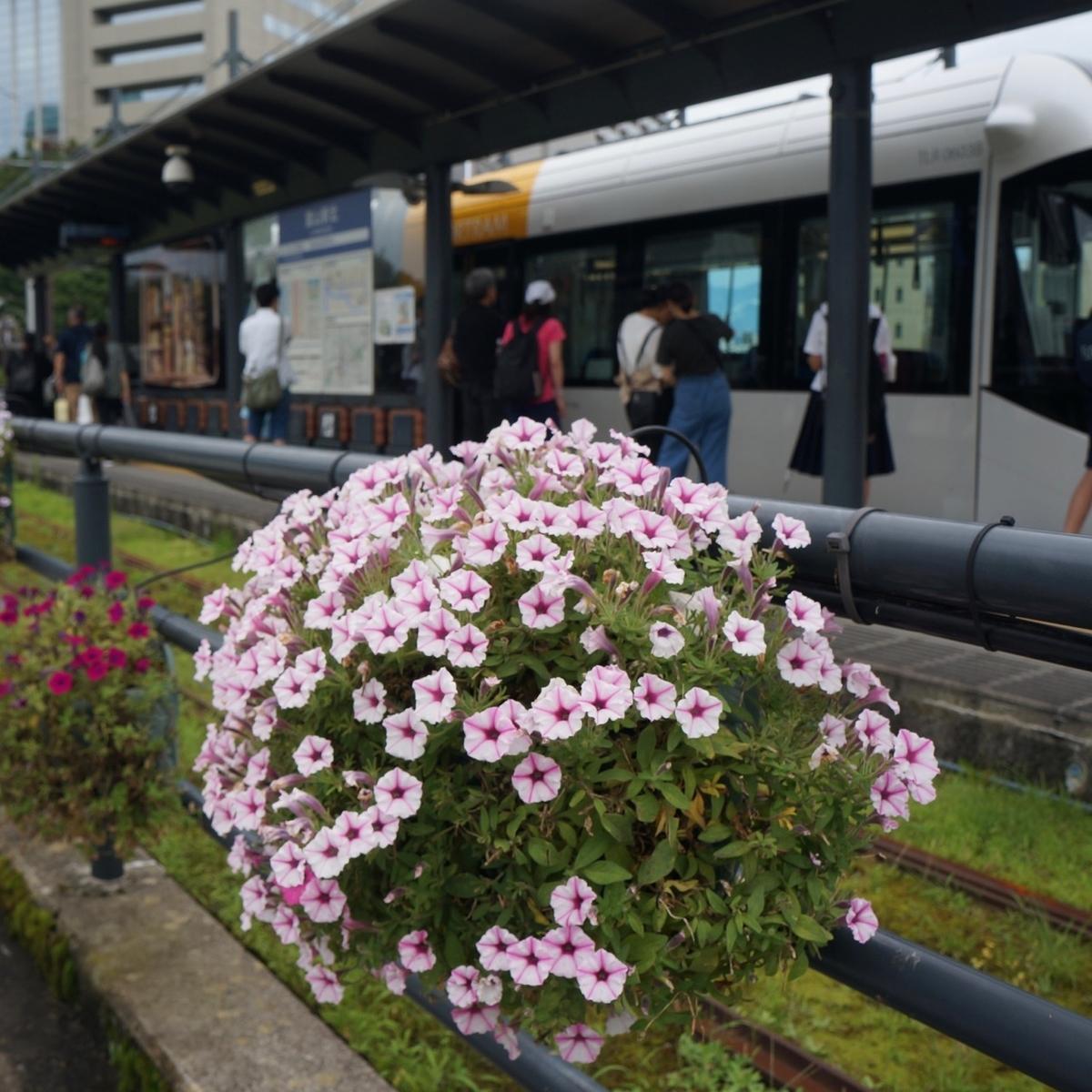 f:id:fukuitabi:20190726121123j:plain