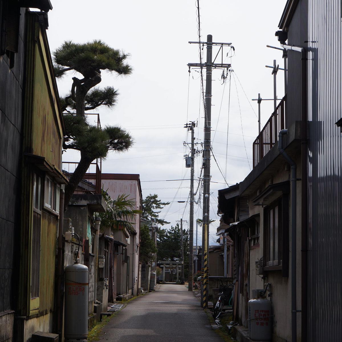 f:id:fukuitabi:20200229065332j:plain
