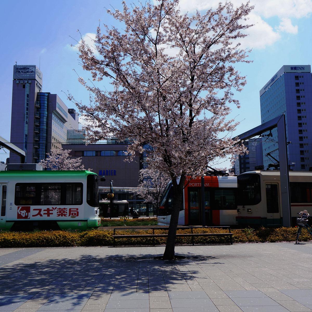 f:id:fukuitabi:20200409202311j:plain