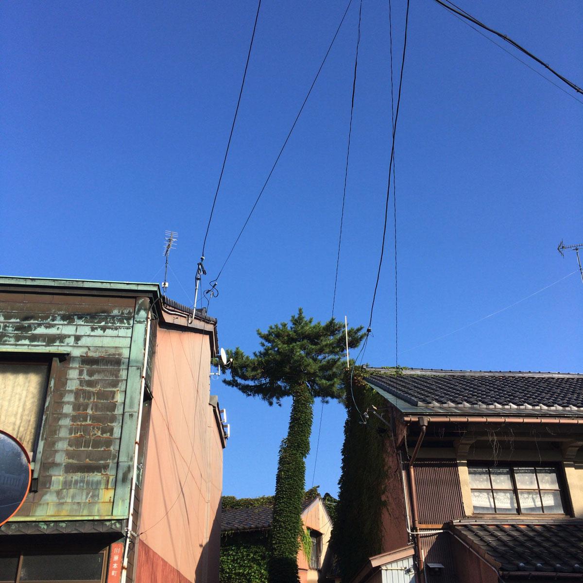 f:id:fukuitabi:20201003060927j:plain