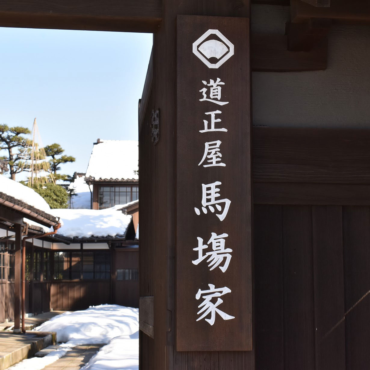 f:id:fukuitabi:20210122154245j:plain
