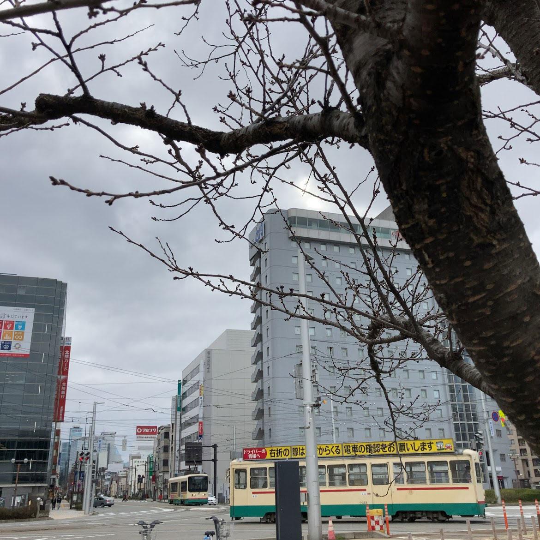 f:id:fukuitabi:20210303200019j:plain