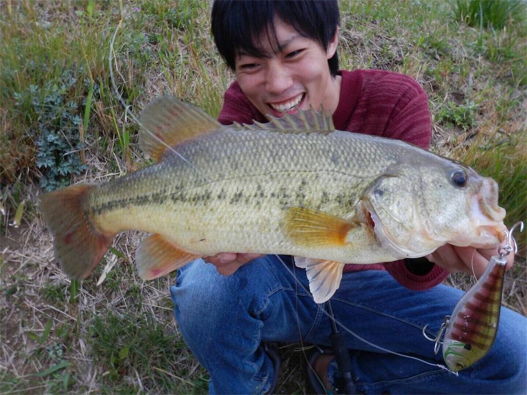 f:id:fukuiyuta:20170411111345j:image
