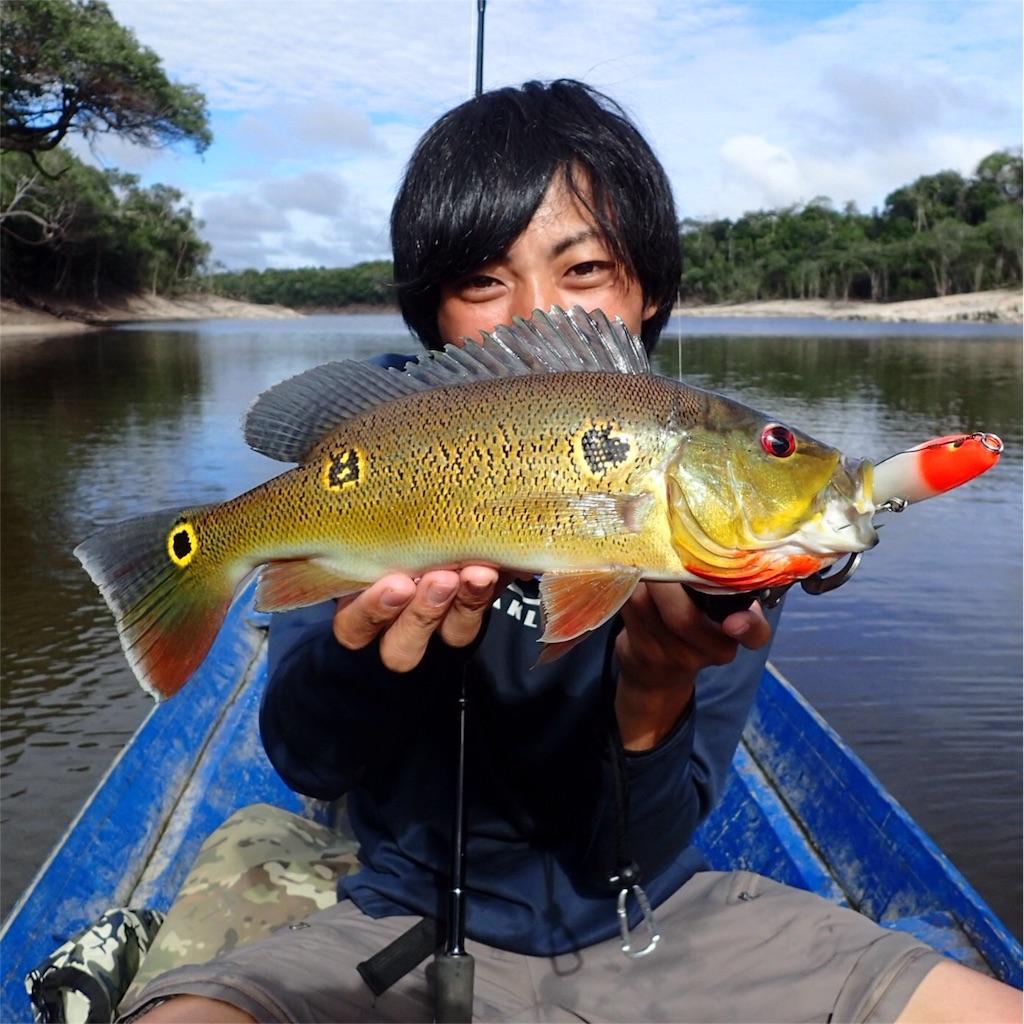 f:id:fukuiyuta:20170412115321j:image