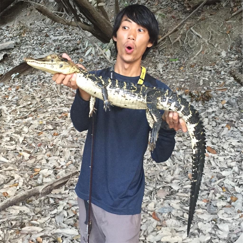 f:id:fukuiyuta:20170419114231j:image