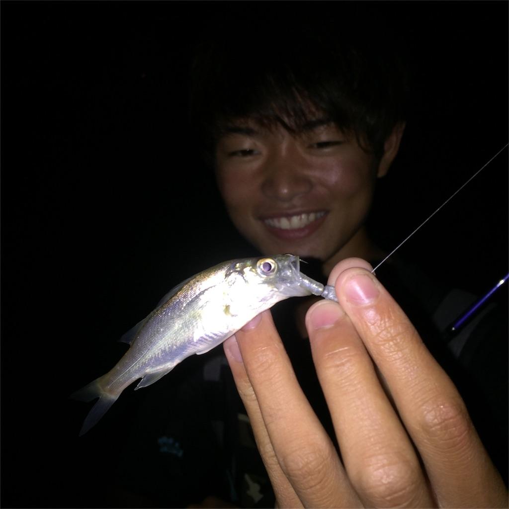 f:id:fukuiyuta:20170714102632j:image