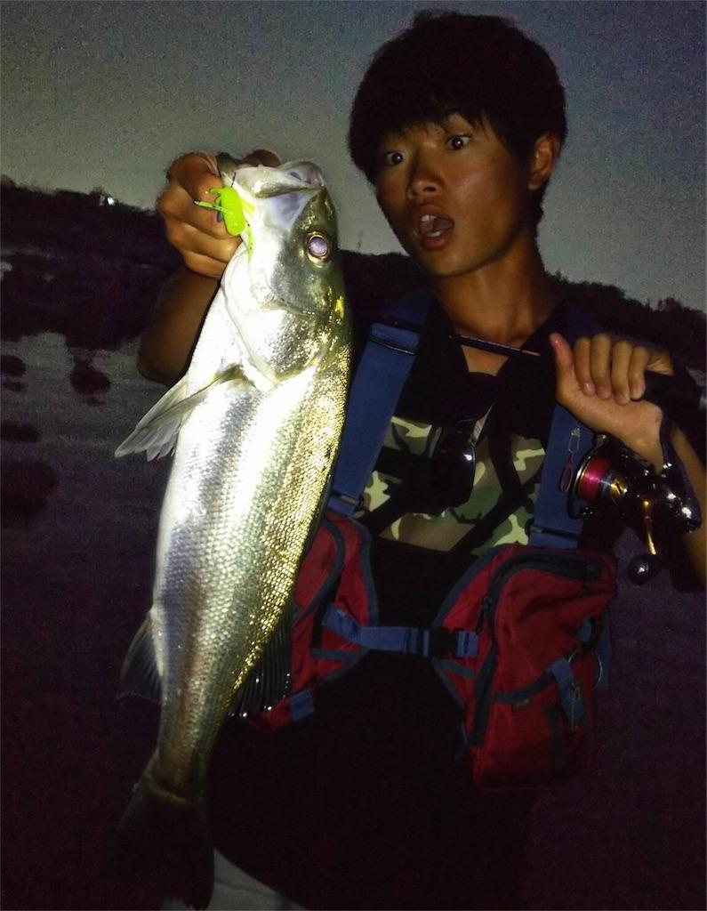 f:id:fukuiyuta:20170714115001j:image