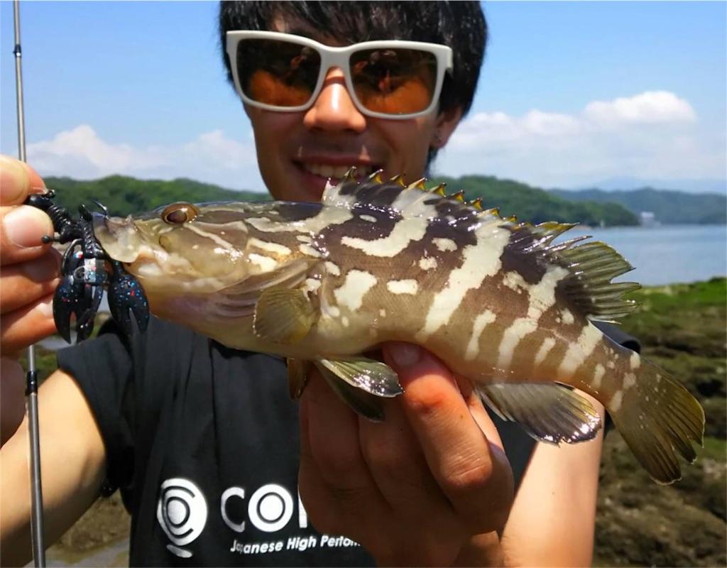 f:id:fukuiyuta:20170724114753j:image