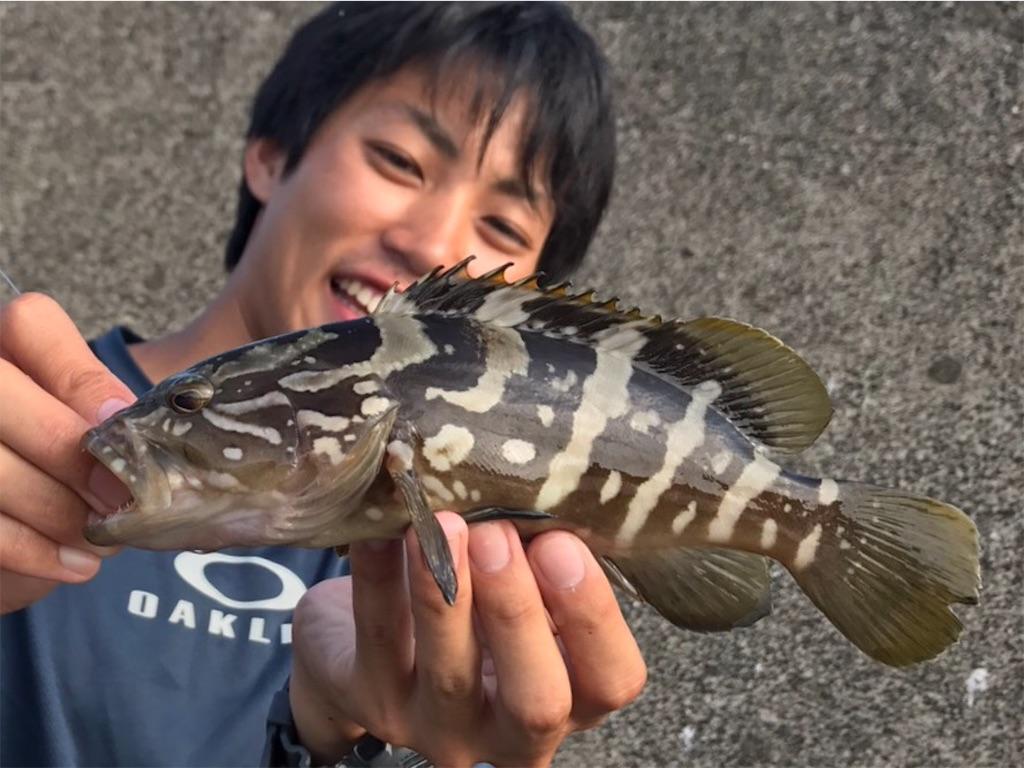 f:id:fukuiyuta:20170724114834j:image
