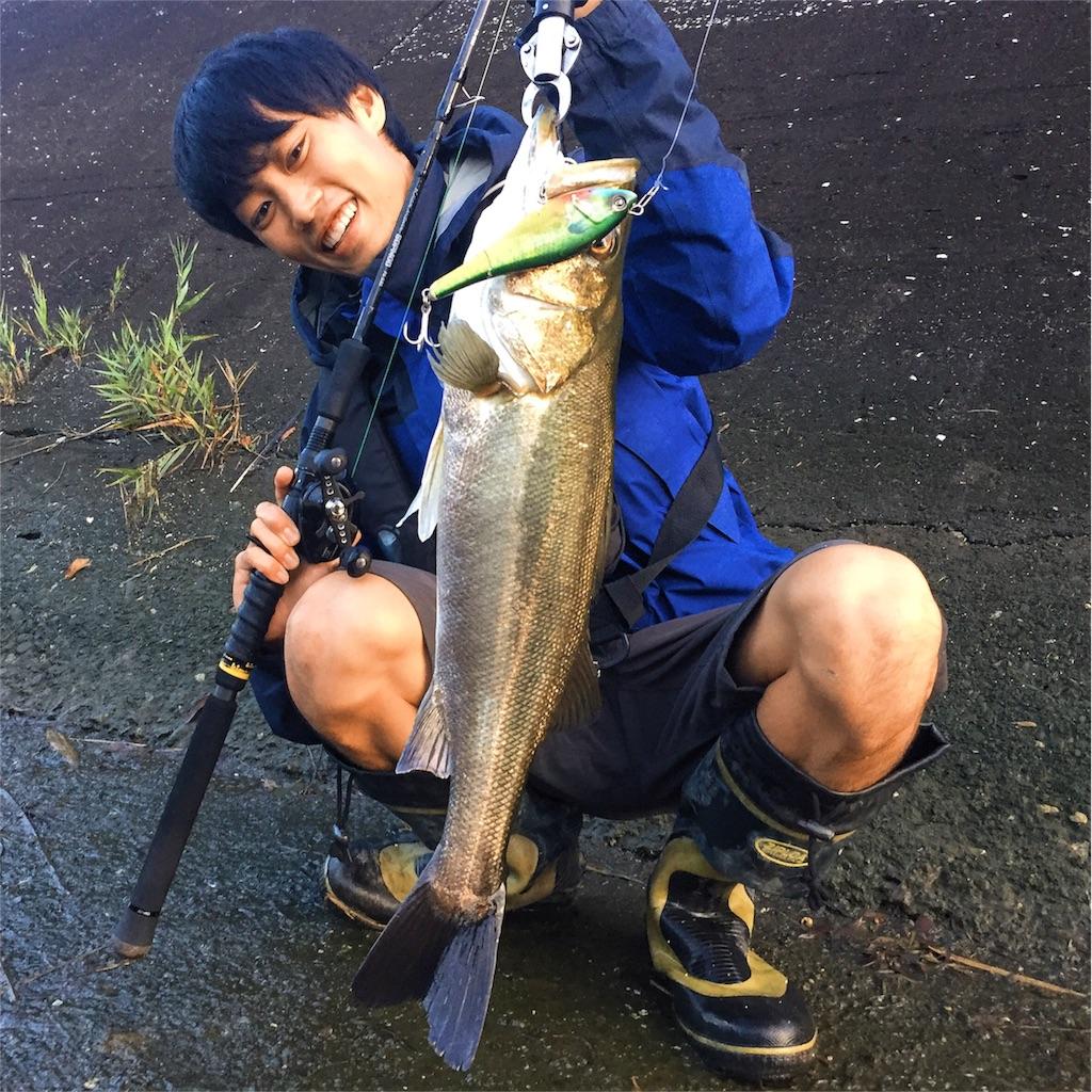 f:id:fukuiyuta:20170802143407j:plain