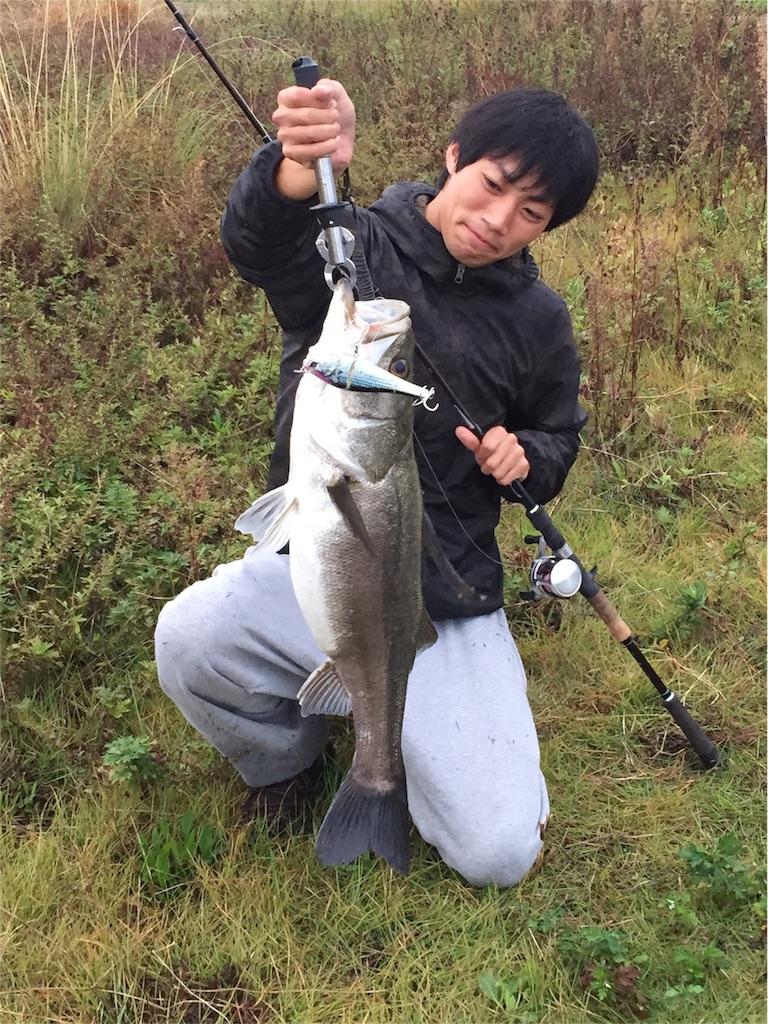 f:id:fukuiyuta:20170802173158j:plain