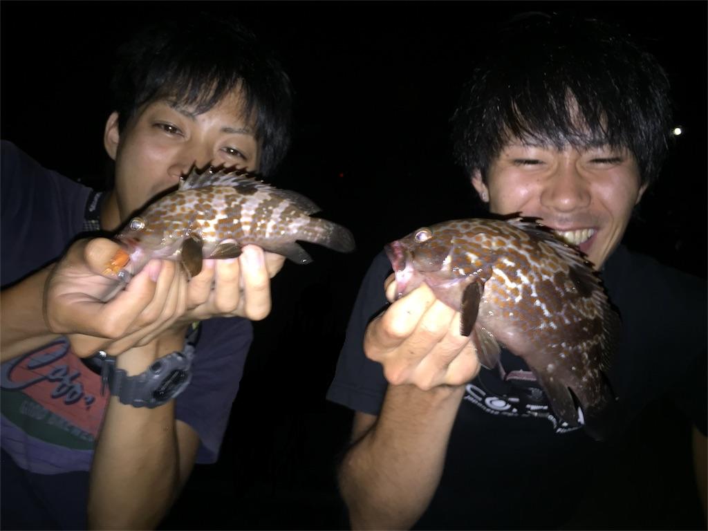 f:id:fukuiyuta:20170804125246p:plain
