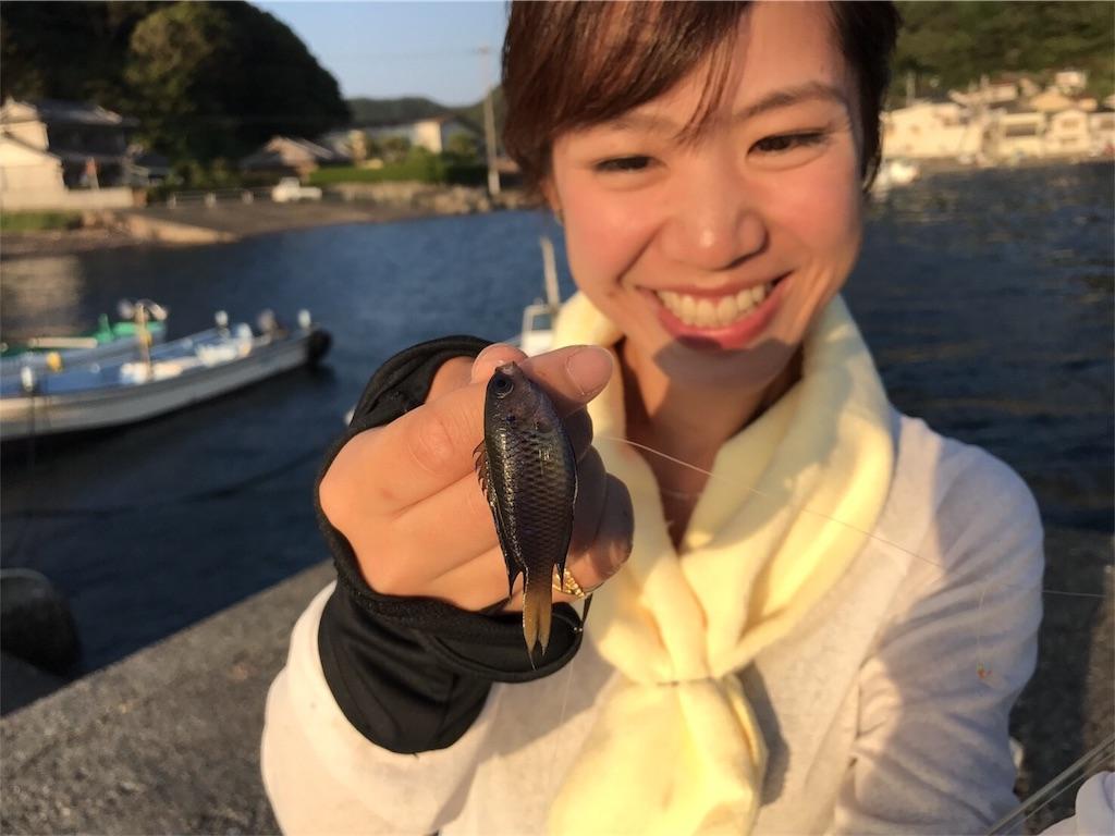 f:id:fukuiyuta:20170908144344j:plain